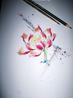 Lotus + watercolor