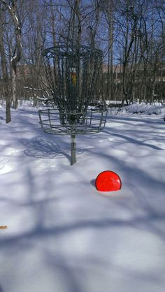 Disc golf snow
