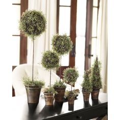 angel vine topiaries. I have five of these in my home and I just love them. You can get these at home decorators.com