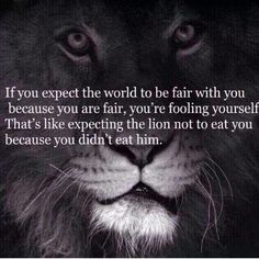 If you expect the world to be fair life quotes quotes quote world life life lessons fair best quotes meaning Now Quotes, Life Quotes, Funny Quotes, Daily Quotes, Random Quotes, Success Quotes, Jerk Quotes, Fierce Quotes, Humorous Sayings