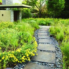 Grasses and shale - Great Garden Paths - Sunset