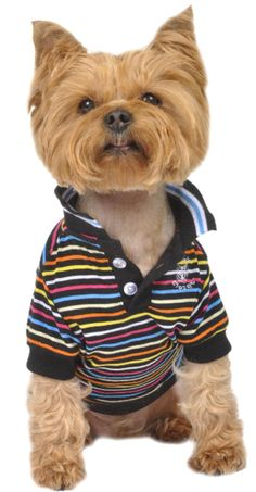 60f8d6d05 Small Dog Polo Shirt Small Dog Clothes