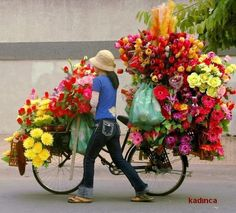 somewhere in the world i girl loads her bicycle with flowers for sale Flowers For Sale, My Flower, Beautiful Flowers, Colorful Flowers, Flowers Today, Fresh Flowers, Simply Beautiful, Spring Flowers, We Are The World