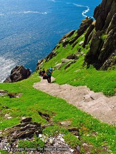 Skellig Michael. Not for the faint hearted or those with vertigo!