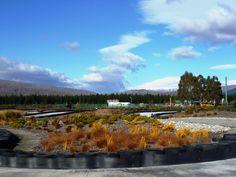 Highlands Motorsport Park Kart Track landscaping by Lynne Wilson Landscape Design, Cromwell, Central Otago, NZ