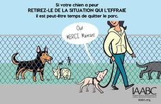 Here is a series of posters from the International Association of Animal Behavior Consultants on tips for dog park etiquette. Dog Training Equipment, Dog Training Tips, Horse Behavior, Dog Organization, Organizing, Dog Body Language, Education Canine, Pet Dogs, Pets