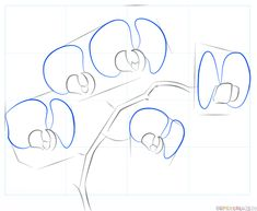 How to draw an orchid step by step. Drawing tutorials for kids and beginners.