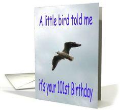 Happy 101st Birthday Flying Seagull bird card