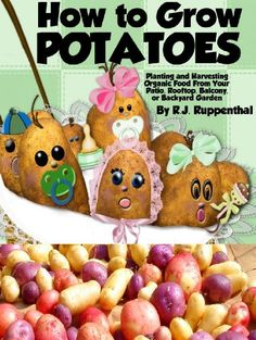 How to Grow Potatoes: Planting and Harvesting Organic Food From Your Patio, Rooftop, Balcony, or Backyard Garden (Booklet) - http://goodvibeorganics.com/how-to-grow-potatoes-planting-and-harvesting-organic-food-from-your-patio-rooftop-balcony-or-backyard-garden-booklet/