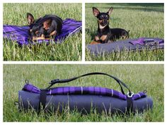 Hund: Decken - funktionale Hundedecke Größe S - lila kariert - ein Designerstück von Perro-Paolo bei DaWanda