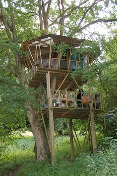 Jack wants this one. Two-story tree house with skylight. I like the idea of using the upper level as a cover for the porch. Cool Tree Houses, Fairy Houses, Play Houses, Wood Houses, Module Design, Bamboo Structure, Woodland House, Tree House Designs, Tree Tops