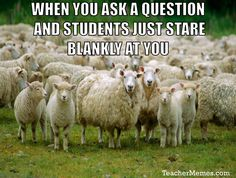 When you ask a question and your students just stare at you. TeacherProblems at TeacherMemes.com