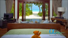 Alpha Maldives is a tour operator specialising in luxury Maldives holidays and honeymoon packages, offering a wide range of resorts, offering superb all inc Maldives Luxury Resorts, Maldives Honeymoon, Maldives Holidays, Honeymoon Packages, Beach Villa, Sunset Beach, Luxury Holidays, Tour Operator, Home