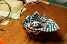 Cute felted sloth in the basket
