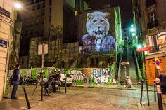 Street Art : la faune parisienne et ses paradoxes en lumière - Influencia