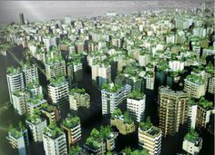 Telhados Verdes | Larissa Carbone Arquitetura