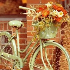 Love this vintage pear green & polka dot bicycle with its basket overflowing with blossoms!