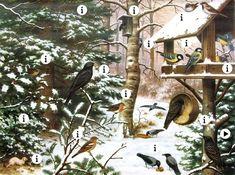 vogels in de winter  #kleuters