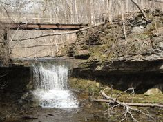 Another angle...absolutely gorgeous and will be stunning in late fall. Yellow Springs, Ohio.