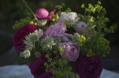 Bukiet z angielskich róż ozdobiony przywrotnikiem i jarzmianką