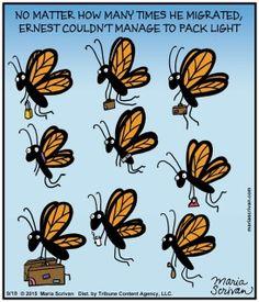 butterfly butterflies humor touring monarch jokes ernest caption light times packing quotes caterpillar gardening barb baker