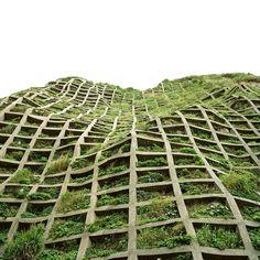Vertical Garden in Japan by Yasushi Okano   Yellowtrace