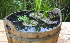 So legen Sie einen Miniteich richtig an - Wasser belebt und macht einen Garten eigentlich erst vollständig – doch nicht jeder hat genügend Platz, um einen richtigen Gartenteich anzulegen. Unsere Idee lässt sich leicht nachmachen, braucht kaum Fläche und verwandelt den kleinen Holzbottich in einen hübschen Miniteich.