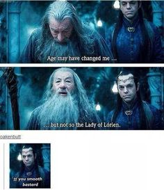 I'd like to remind everyone that this is Elrond standing aside and smirking while an old man who smokes weed flirts with his married mother-in-law.