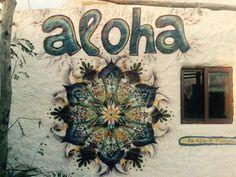 El Ajo Aloja, Cabo Polonio