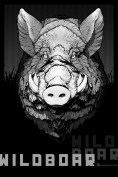 wild boar comic style illustration from digital sculpture: http://www.turbosquid.com/FullPreview/Index.cfm?ID=1043611&seo=0&/?referral=voronart