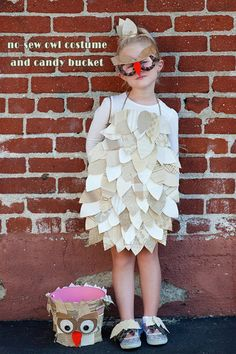 No-sew owl costume with a matching candy bucket, from here .     Here are some of my favorite owl costumes which are simple to make a...