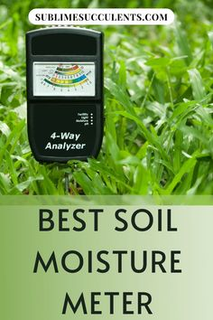 If your succulent watering routine could use a little help, here are some of the best soil moisture meters on Amazon. Find the most honest reviews and comparison in finding the best soil moisture meter. See it all here! #succulents #succulentgardening #indoorgardening #outdoorgardening #gardeningtips #soilmoisturemeter Indoor Succulents, Succulent Gardening, Garden Soil, Succulents Garden, Cactus Plants, Gardening Tips, Succulent Care, The More You Know, Types Of Plants