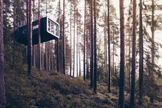 The Tree Hotel in Sweden