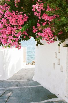 a romantic afternoon stroll in the Isle of Milos