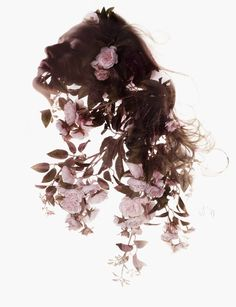 flower, photography, rose, pink, art,