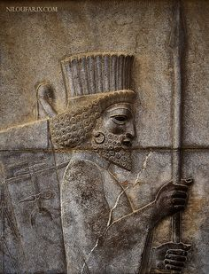 Persian Guard at Persepolis / 2500 years old / IRAN