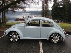 '67 Volkswagen Beetle — Tim Mossman's 1500 CC Engine Build | 1967 VW Beetle.