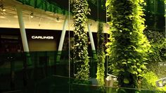 Green Fortune - Plantwall and Plantwire at Emporia