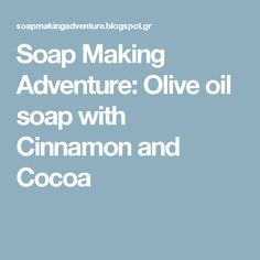 Soap Making Adventure: Olive oil soap with Cinnamon and Cocoa