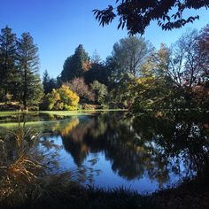 Reasons Why Davis Is The Most Underrated College Town