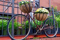 bike planter in Webster Groves, MO #WebsterGroves
