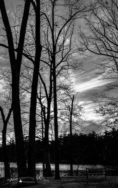 Shakamak State Park in Indiana | Wandering Ways Photography | Amy 2017
