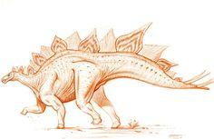 Stegosaurus armatus by PaleoPastori.deviantart.com on @DeviantArt
