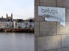 Beluga Loves You**