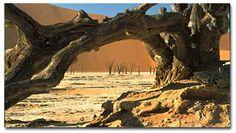 World Deserts Sand Dunes - DesertUSA