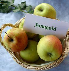 Sommigen hebben een lievelingskleur, lievelingssokken, een lievelingstante, een lievelingsdier... Ik heb een lievelingsappel: de Jonagold appel!