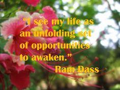 ...an unfolding set of opportunities...