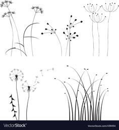 Black and white plants silhouettes Dandelions collection for designers. Download a Free Preview or High Quality Adobe Illustrator Ai, EPS, PDF and High Resolution JPEG versions. ID #439454.