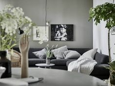 Home with grey and green