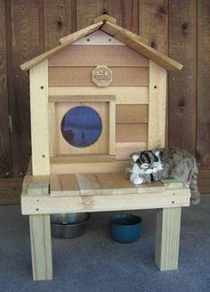 Cedar cat house with platform